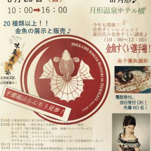 明日は北海道金魚祭り   【蘭鋳とランチャー