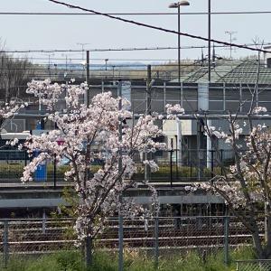 4月の風に吹かれて駅のベンチでひとり♫