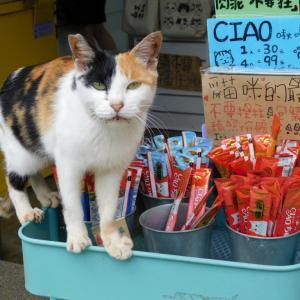 弾丸!台湾旅行(5)猴硐・猫村 その2