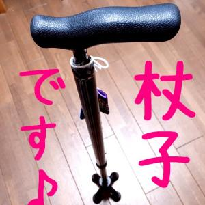 杖子とゆづる