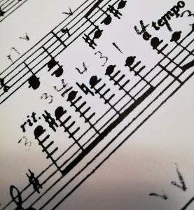 2人バイオリン再始動