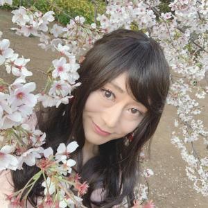 桜のお花**❁( ✿˘︶˘✿ ).。.:* ♬*゜**4月カレンダー♪