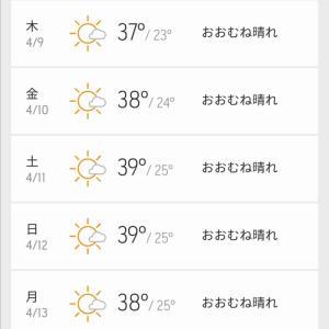 ヤンゴン暑いです