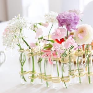 ★春の花の器は意外と大活躍のこちらがおすすめ!