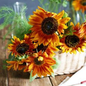 ☆暑い夏は室内でひまわり鑑賞♡オススメテーブル花いけ