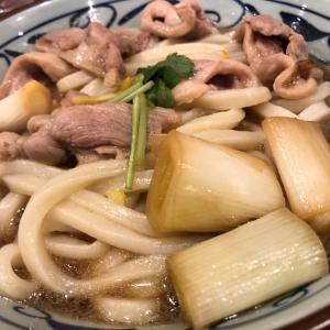 丸亀製麺における鴨葱うどん