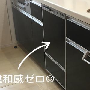 ビルドイン食洗機の後付け工事*不人気?フロントオープン型にした理由
