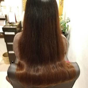 髪の毛のダメージはヘナで解消!艷やかに健康を求める女性は輝いていますね