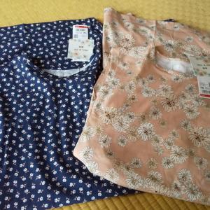 ミニサイズはユニクロで子供服を賢く買い物