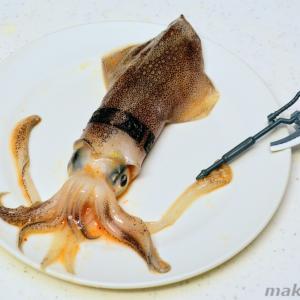 【エギンガー必見】通常の3倍美味い!シャア専用マメイカの沖漬け