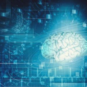 脳の形状記憶