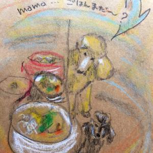 犬ごはんを考える   〜その3〜