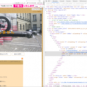 楽天ブログの右上にあるZマークはランダムリンクでした