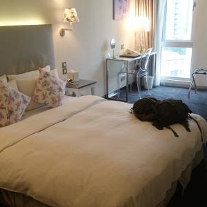 台北 日本語OK『アンビエンスホテル』朝食が美味しく、自然光の入る部屋は快適です