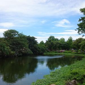 台北最大規模の大安森林公園は野鳥の宝庫で、子供から大人まで憩いの地です