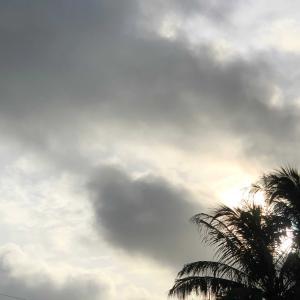 台風の前にする事