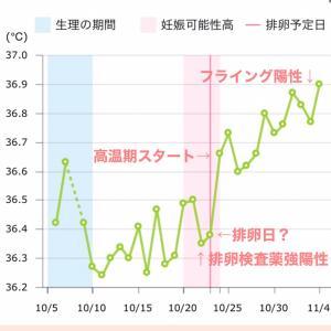 妊娠した周期の基礎体温