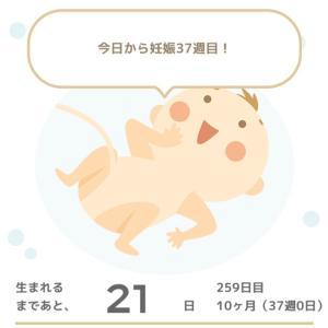 【正産期】ついにあのアプリをダウンロード!