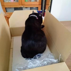 ありがたい箱