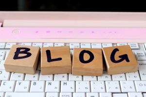 やっとブログ村に新着記事が反映された