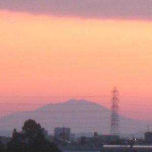 『夜明け前の散歩』(200616)