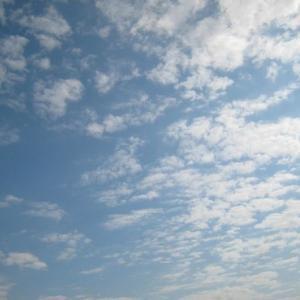 『きょうも平穏な一日だったといっていいだろう』(201112)
