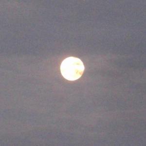 『食事の頃西の空にもう夜明け前近くの月が見えていた』(210725夜明け前)