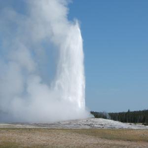 イエローストーン国立公園 (Yellowstone National Park) 全カントリー (Ceyser, Lake, Canyon, Roosevelt, Mammoth Country)