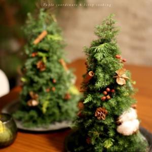 今年の研究会ワークショップはクリスマスツリーを作ります♪