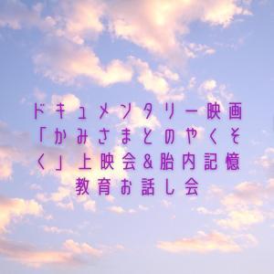 【詳細発表】胎内記憶教育®︎フォーラム3days⑯ 沖縄