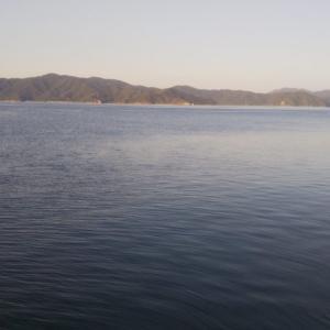 奄美大島 遠征釣行日記 3日目(古仁屋2日目、1日目とほぼ同じ場所で釣り)