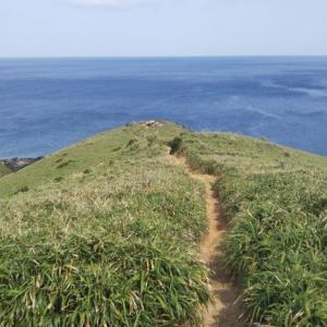 奄美大島 遠征釣行日記 4日目(宮古崎ササントにある地磯での釣り)