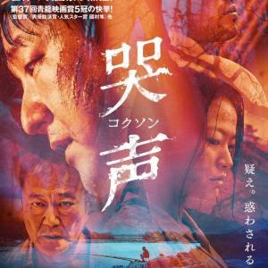 R15+指定 映画「哭声/コクソン」真犯人と絶対にはまらないピース