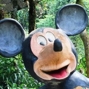 サパのハムロン丘でネズミたちに出会った~。(ベトナム:一人旅)