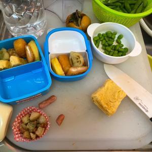お弁当、、、玉子焼きとオニギリ以外は冷凍食品なパパ弁当(⌒-⌒; )