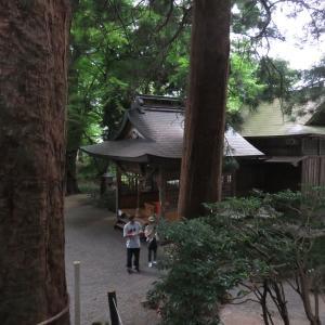 神社巡り 宇奈岐日女神社・大杵社