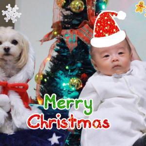 メリークリスマス☆最近のももとほまれ