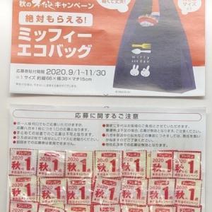 12/1の体重 秋の本仕込みキャンペーン『ミッフィーエコバッグ』、応募しました?