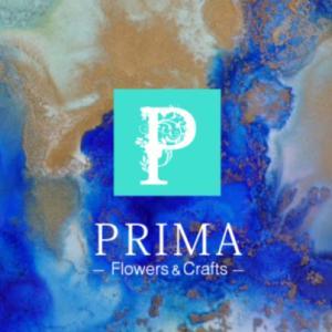 PRIMAのHPがオープンしました!