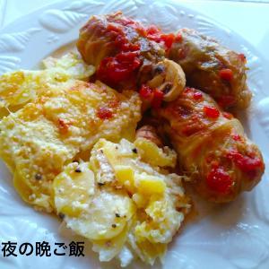 夫の日本語のレベル / 鶏ひき肉のロールキャベツレシピ
