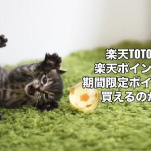 楽天TOTOは楽天ポイントや期間限定ポイントで買えるのか?意外な裏技も?