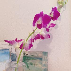 私の中のハワイの花