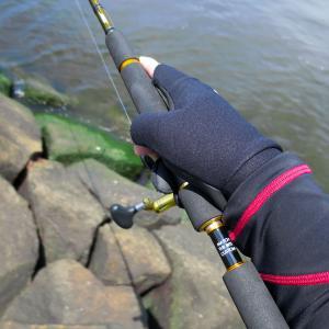 シーバス釣り・初夏(4~6月)デイゲームの注意点