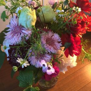 私のストレス解消、花を買う!いい空気を吸う!