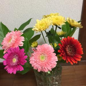とても小さな花屋さんで、今週の花を買う! 千円分