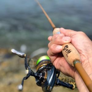 猿好きオヤジのエギング釣行記 《知多半島にも春が来て〜》
