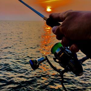猿好きオヤジのエギング釣行記 《タコちゃいまんねんイカでんねん》