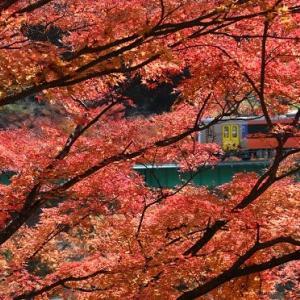 水郡線と矢祭山の紅葉