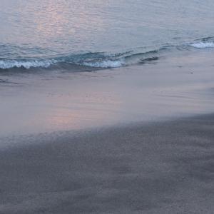 海*2019*42日め