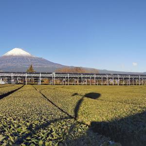 年の瀬の富士山 2020